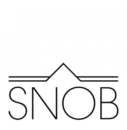 Oblikovanje logotipa SNOB